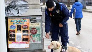 Kastamonuda 100 polisle asayiş uygulaması