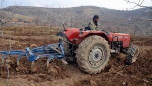 Yalancı bahar fıstık üreticilerini kaygılandırdı
