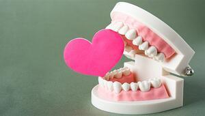 Diş sağlığı kalp sağlığını nasıl etkiliyor