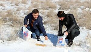 Erzincan'da yaban hayata destek