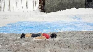 Kardan Aylan ve Ümranı yaptı