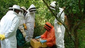 Çankırı'daki orman köylüsüne 18 milyon lira destek
