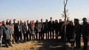 Yalova'daki 'kuş oteli' misafirlerini yeniden ağırlıyor