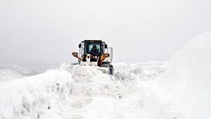 Bitlis'te kardan kapanan 350 köy yolundan 210u açıldı