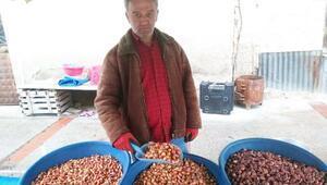 Tohumluk kuru soğanın fiyatı düştü
