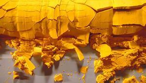 Rusyadan İrana 149 ton sarı kek
