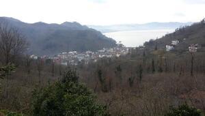 Büyükşehir Belediyesi Bolaman ve Yalıköy'de imar planı çalışması başlattı