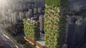 Çin çevre kirliliğine karşı dikey orman inşa ediyor