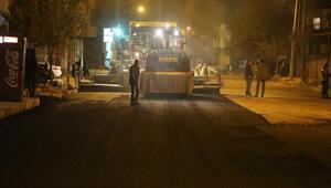Silopi'de sokağa çıkmaya yasağı saatlerinde asfaltlama çalışması