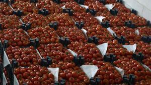 ANALİZ- Rusyanın yerli tarım seferberliği Türk çiftçisini etkiliyor