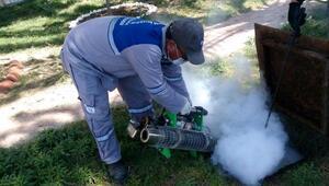 Büyükşehir sivrisinekle mücadele başlattı
