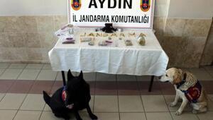 Aydında uyuşturucu operasyonu: 7 gözaltı