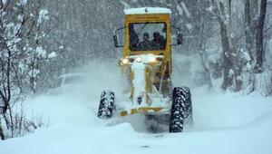 Kar doğuda etkili oluyor (3)