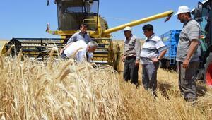 Borsa Başkanı Sümer: Verimli hasat dönemi bekliyoruz