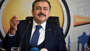 Adanaya 1 milyar 347 milyonluk yatırım