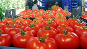 Organik gıda ihracatında çakma organik tezgahı