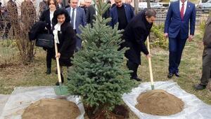 Bakan Eroğlu: CHPli kardeşlerimizi evet vermeleri için ikna edeceğiz
