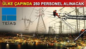TEİAŞ ülke çapında 250 personel alımı yapacak