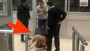 Bavuldan çıktı, polisler şaştı kaldı