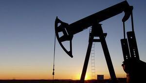 Petrol üretimi 46,1 milyon tona çıktı