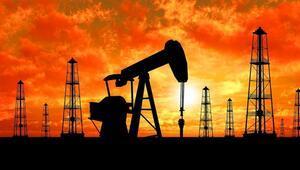 Ham petrol ithalatı aralıkta arttı