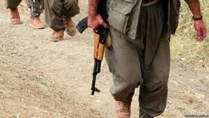 Hakkaride PKK sorumlusu yakalandı
