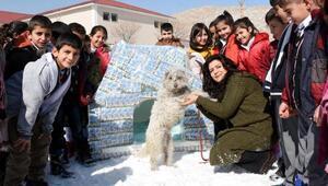 Öğrenciler içtikleri okul sütü kutularından köpek kulübesi yaptı