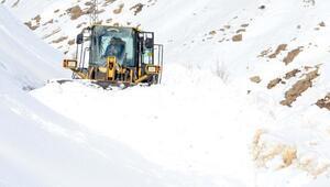 Bitlis'te 12 bin kilometre karlı yol ulaşıma açıldı
