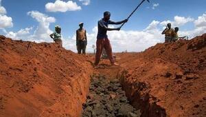 FAO: Açlığı 2030 yılına kadar bitirmek için ilave çabalar gerekiyor