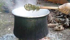 Aslında zehirli ama pişirilince...