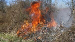 Ateşe verilen lastikler makilik alanı yaktı