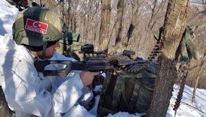 Bitliste PKKya ağır darbe; 8 terörist ölü, 2 terörist sağ ele geçti (3)