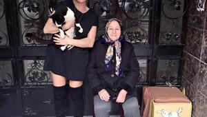 Apartman yöneticisi veteriner hekimle davalık olan hayvansever anne- kız için koruma kararı