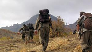 PKKnın üst düzey ismi öldürüldü