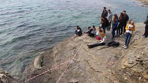 Uyumak için kayalıklara çıkan Akdeniz foku ilgi odağı oldu
