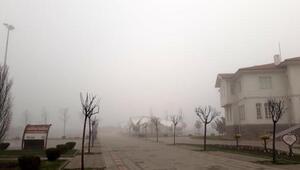 Yalova'da sis deniz ulaşımını etkiliyor