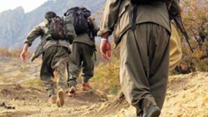 PKKlı terörist Soro Salih öldürüldü