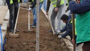 Erzincan'da refüjler yenileniyor