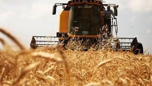 Tarım işçisinin günlük ücreti yüzde 13,4 arttı