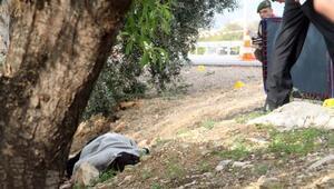 Silifkede yol kenarında kadın cesedi