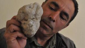 Çobanın insan yüzlü taşları