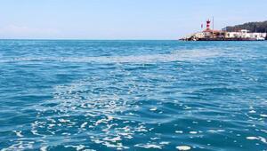 Denizde polen tabakası oluştu