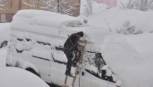 Kar yağışı Bitlis'te etkili oldu