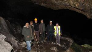Kivi mağarası keşfedilmeyi bekliyor