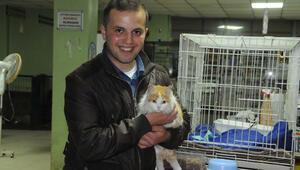Uzman Çavuş Özkan, El Bab'dan kurtardığı Barış adlı kediyi görmeye geldi