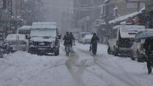 Hakkaride kar yolları kapattı (2)