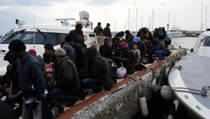 Ayvacıkta 60 kaçak mülteci yakalandı