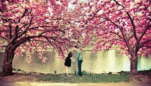 Biz her bahar aşık oluruz