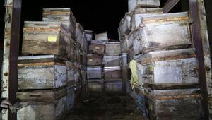 Arı kovanlarının arasında 350 kilo esrar bulundu