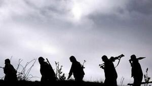 Nusaybinde çatışma: 2 PKKlı terörist öldürüldü
